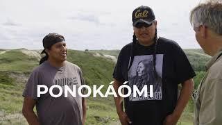Going Horse ELK DOG Episode 1 of Going Native