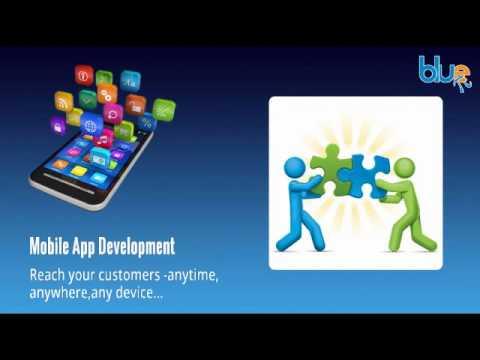 Offshore Software Development Company In India -- Bluepi.in