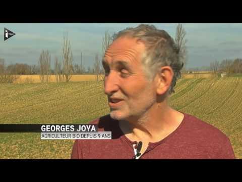 Agriculture : Le Gers, le département le plus bio de France