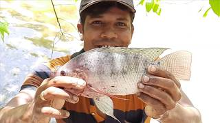 BASS SPAWN FISHING & SURPRISE FISHING IN POND IN RURAL AREA | FISHING |LIKE FRANKLIN SEEBER | FLAIR