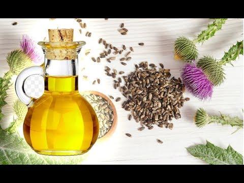 Масло расторопши Полезные свойства и применение
