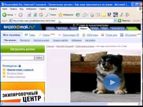 Скачать ВИДЕО с YouTube, Rutube, Mail Ru, VKontakte, LoadUp просто!  Flv