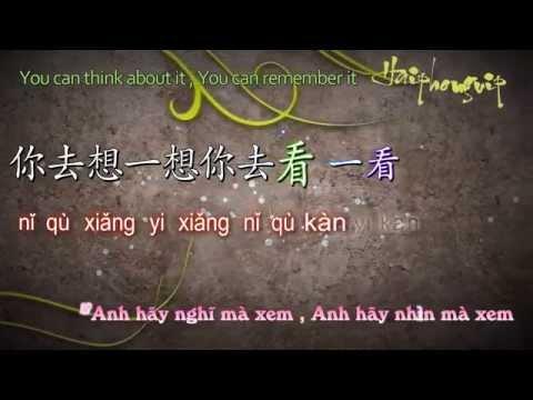 Ánh trăng nói hộ lòng em - 月亮代表我的心 [VietSub+kara] Pinyin