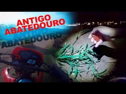 O Antigo Abatedouro - Estrada Assombrada