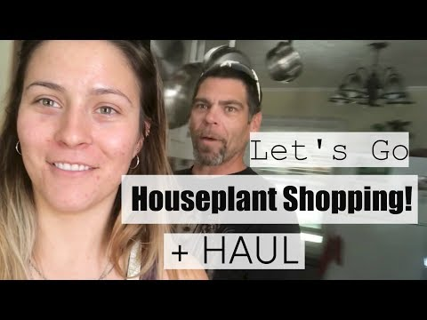 Come Houseplant Shopping at My Fav Nursery! - Houseplant Shopping Haul - 동영상