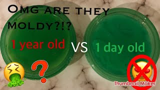 1 year old slime v.s. 1 day old slime!! *Did they change?!* ~slimeypandazzz