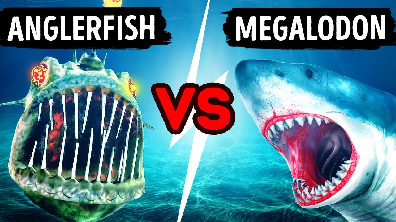 18 Sea Monsters That Are More Terrifying Than Megalodon