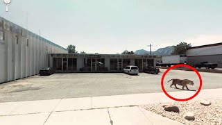 Top 100 Strange things Caught on Google Street View [2015 Compilation]