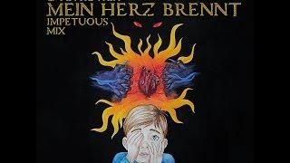 Rammstein Mein Herz Brennt Horror Version Impetuous Mix By Nikolay Shvetsov Petrovich