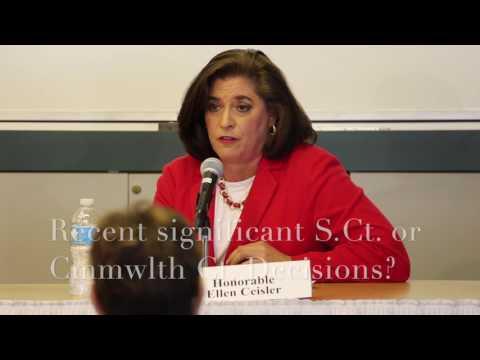 Hon  Ellen Ceisler  discusses Gerrymandering, Voter ID law, and Campaign Finance Reform