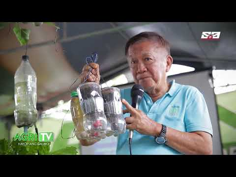 AGRITV March 15, 2020 Episode – URBAN GARDENING – Vegetables Planting in Super Paso
