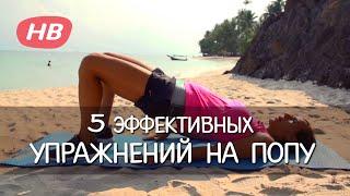 5 самых эффективных Упражнений для Попы. Елена Силка.(Подписка на канал: http://vk.cc/4RToxb Подтянутая женская попка - это предмет гордости и восхищенных мужских взгляд..., 2014-08-04T16:15:41.000Z)