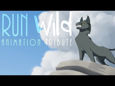 Run Wild // Animation Tribute