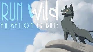 Run Wild // Animation Tribute