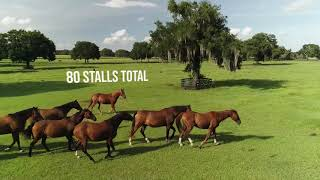 Horse Farm For Sale | 125 Acres | Can be divided | Reddick, Florida