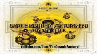 Space Buddha Vs Toasted - Drifter (Original Mix)