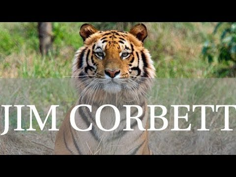 Top Places To Visit and Things To do In Jim Corbett National Park