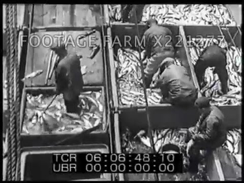 1930s Fishing In New England 221277-05X | Footage Farm