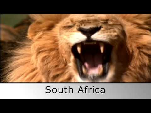 South African Vacations - African Sky
