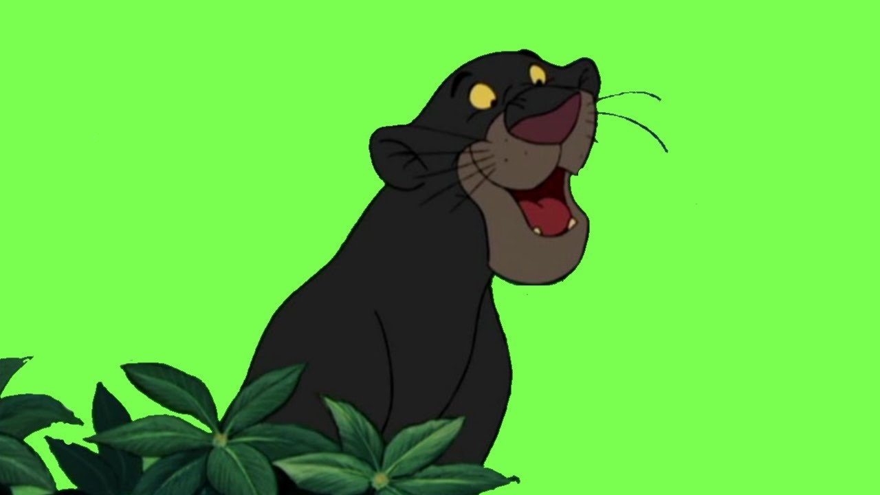 HOW TO DRAW BAGHEERA - THE JUNGLE BOOK, DISNEY - YouTube