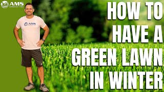 Want A Green Lawn This Winter In Phoenix?
