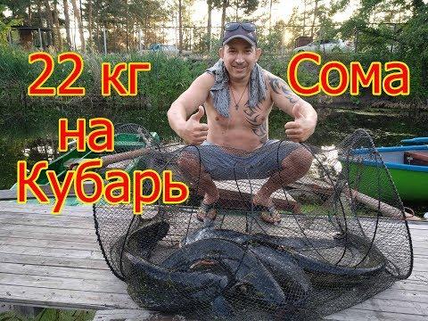 Удачный улов 22 кг СОМА на Кубарь