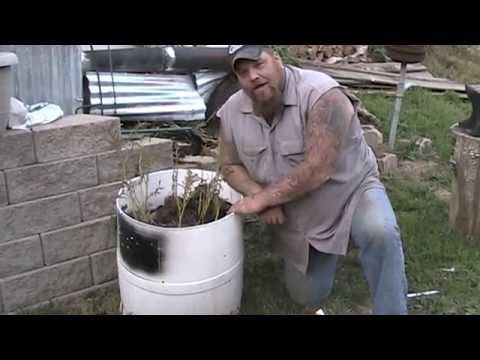 Potato Barrel Experiment:  Fail