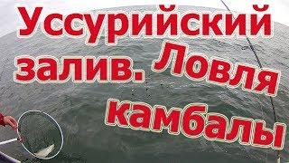 Уссурийский залив ловля камбалы в приморском крае 2019