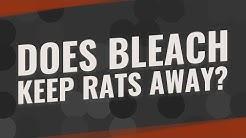 Does bleach keep rats away?