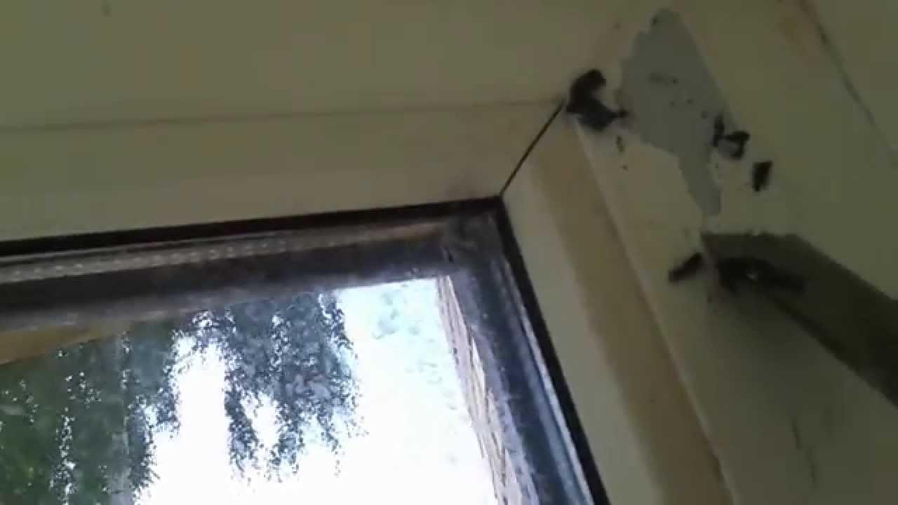 Как убрать старую пленку с пластиковых окон 3 камерные пластиковые окна