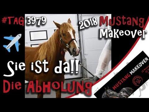 Wir holen meinen Mustang am Flughafen ab – Mustang Makeover