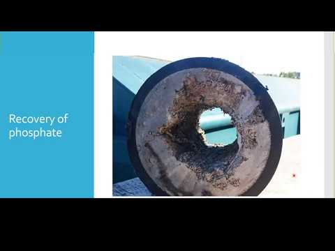 Spotlight Video: Phosphate Recovery With Struvite From Wastewater