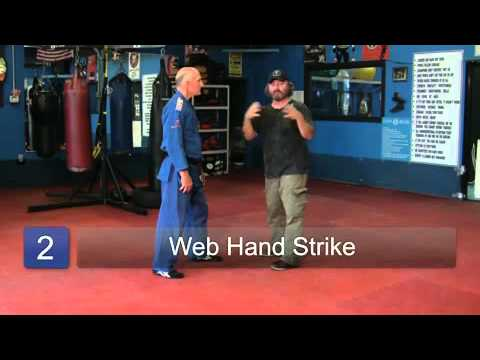 Krav Maga Basics: Crucial Striking Points