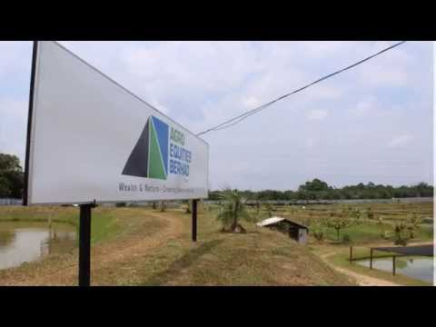 Introduction of AEB latest farm acquisition