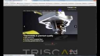 Подбор запчастей в WebCat Trisсan(Trisсan комплексный поставщик запасных частей для вторичного рынка. Приличный и универсальный каталог, охвач..., 2013-11-27T07:45:22.000Z)