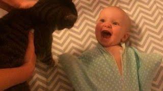 猫を見ると超ハイテンションになる10か月の赤ちゃんがヤバイ