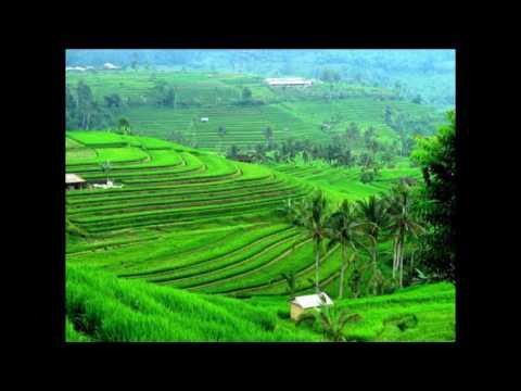 Seruling Sunda (Degung Sunda) dengan Nuansa Pegunungan | The Best Relaxation Music