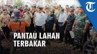 Menteri Lh Panglima Tni Serta Kapolri Pantau Lahan Terbakar Di Palangkaraya