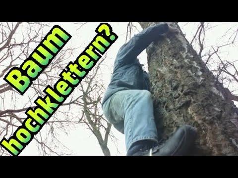 Kletterausrüstung Baum Fällen : Baumklettern mit einer fußschlinge #013 youtube