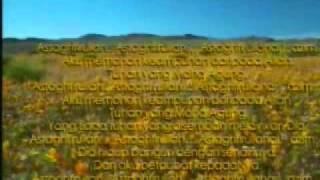 Zikir Taubat Istighfar - Ustaz Zulkarnain (Astro Oasis)