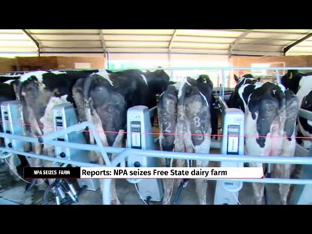 NPA seizes Free State dairy farm: Reports #1