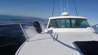 Dickey Boats Semifly 32 Feature Review