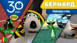 БЕРНАРД: Приключения Бернарда и Зака | 30 минут (Подборка)