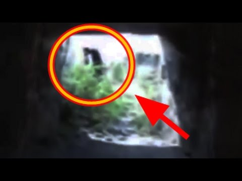 5 Real Witches Caught On Camera   Top 5
