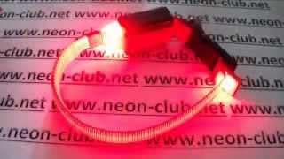 Ошейник светящийся для котов и мелких собак, красный XS 18-27 см led