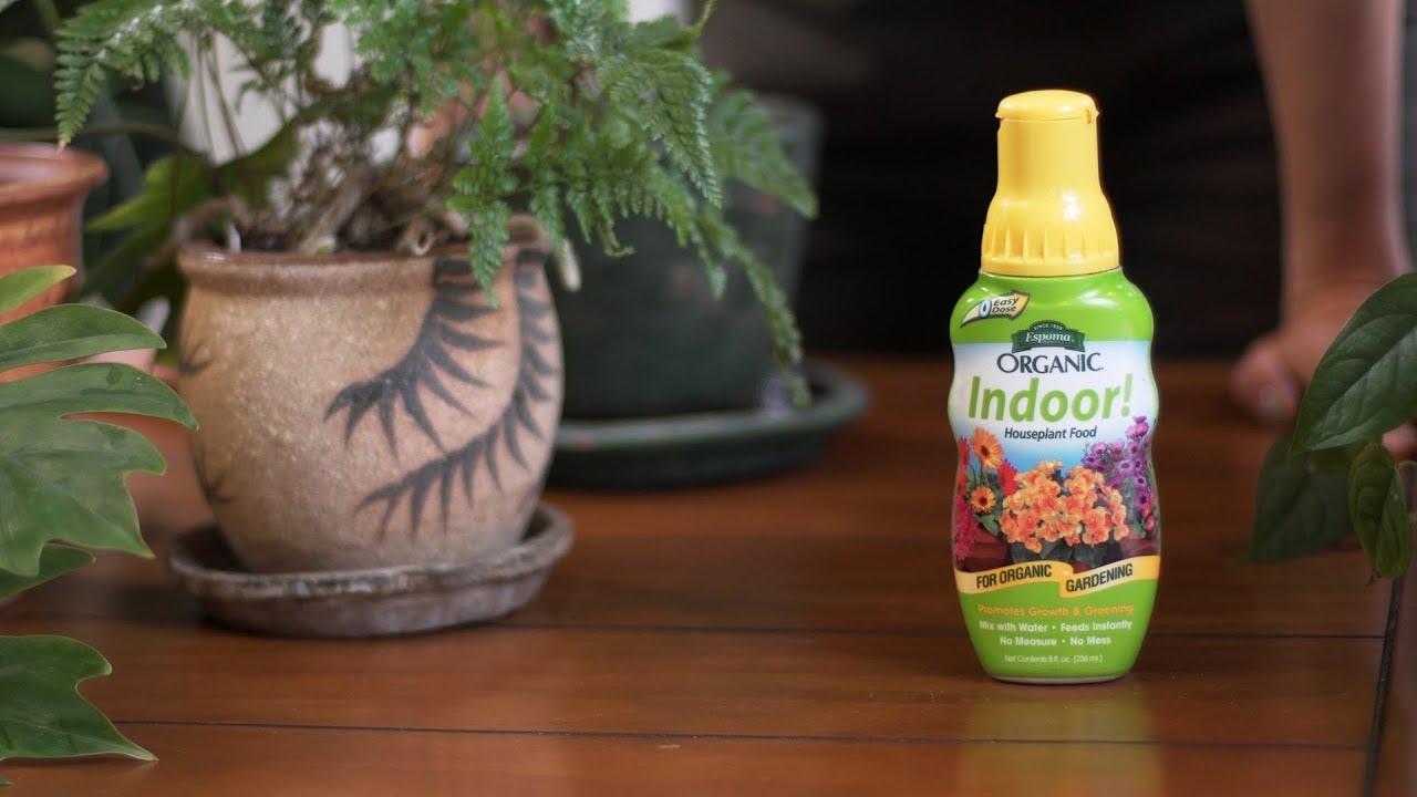 How To Fertilize Houseplants With Homestead Brooklyn Espoma Organic