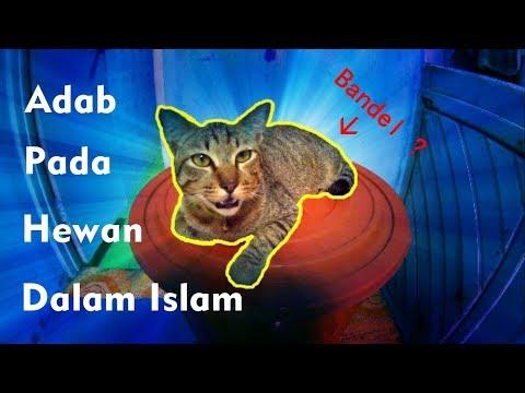 Adab Pada Binatang Dalam Islam