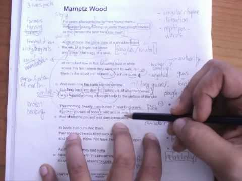 mametz wood poem analysis essay