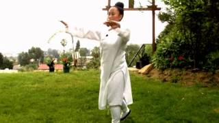 wudang 5 animal qigong instructions