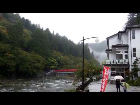 Rainy Autumn Day in the Mountains of Japan